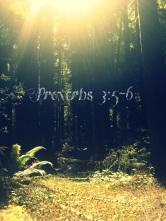 blog pics